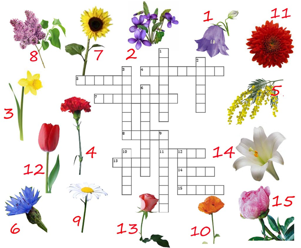 crossword flowers for children